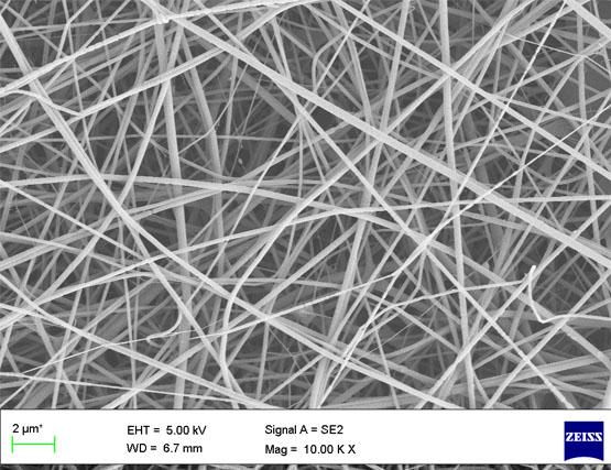 Silk fibroin electrospun scaffolds